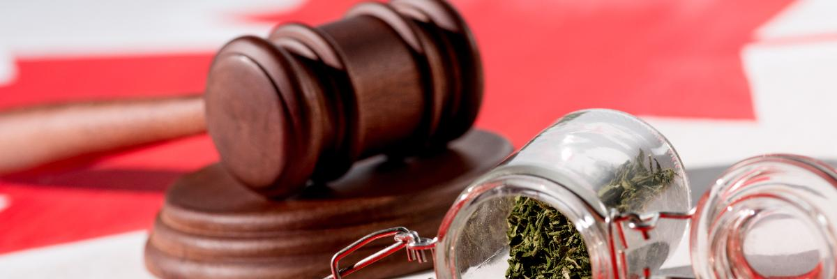 Land Use and Municipal Considerations of the Cannabis Law